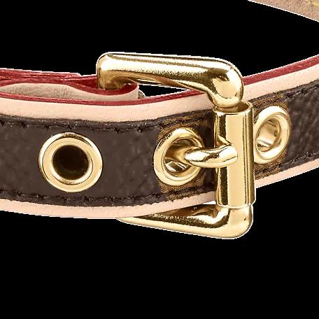 Louis Vuitton MONOGRAM Louis Vuitton BAXTER DOG COLLAR PM